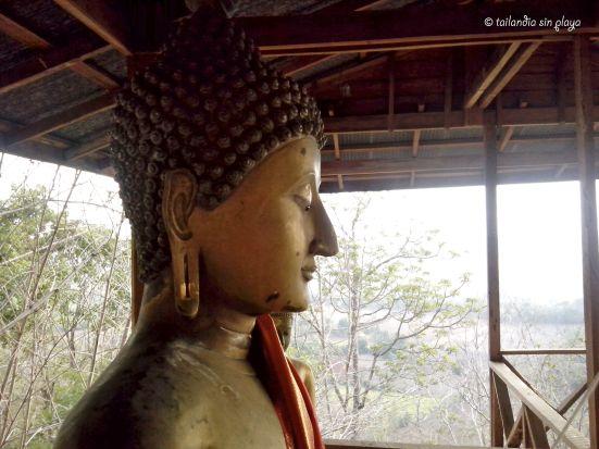 Buda en un refugio de madera
