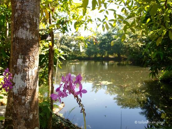 Lago natural
