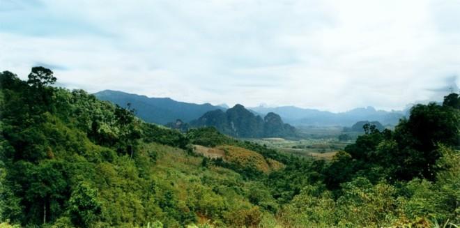 parque natcional khao sok