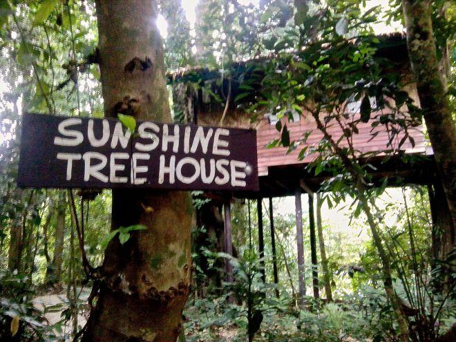 Casa en el árbol en Khao Sok