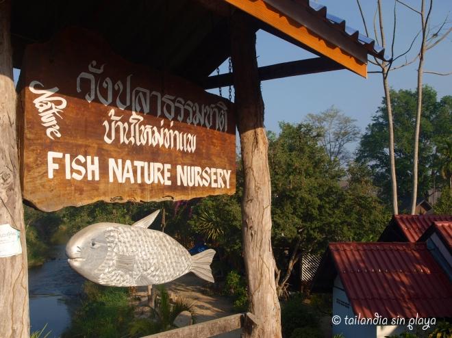 río y restaurantes en Umphang
