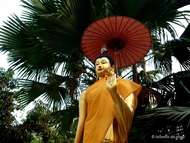 Estatua Buda templo blanco