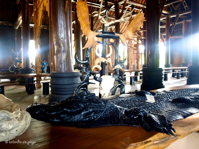 Cocodrilo en Cas Negra Chiang Rai