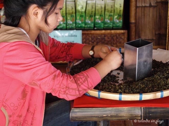 Preparando té en Mae Salong
